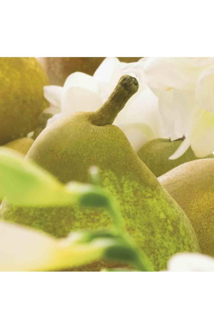 Fresh English Pear & Freesia Fragrance Oil -Premium Grade